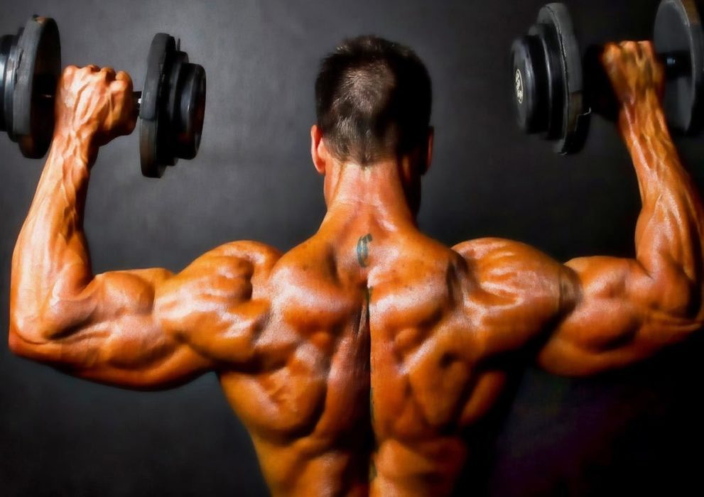 bodybuilding-cycles