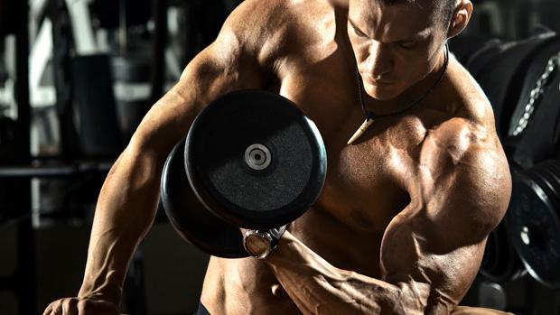 bodybuilding-muscle.gain