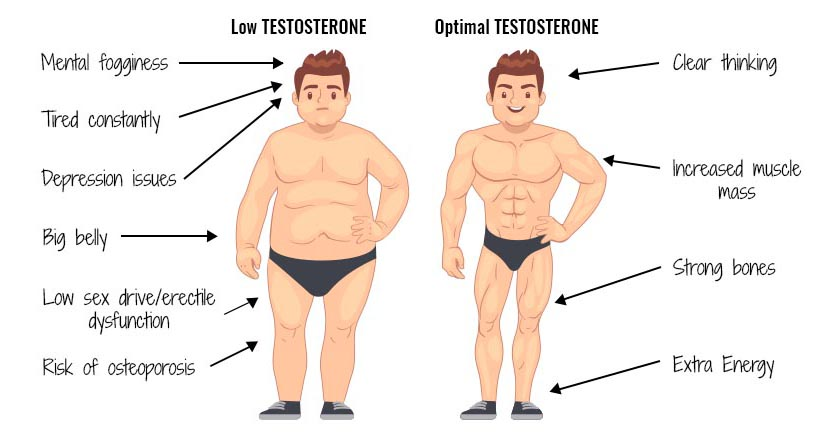 low.testosterone-optimal.testosterone
