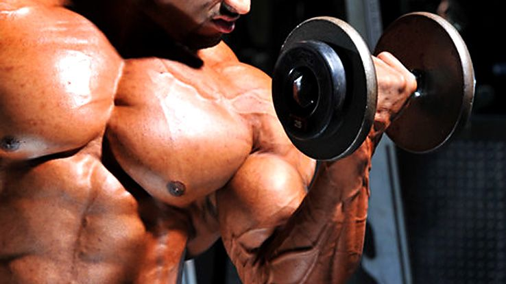 muscle-gains-with-nandrolone