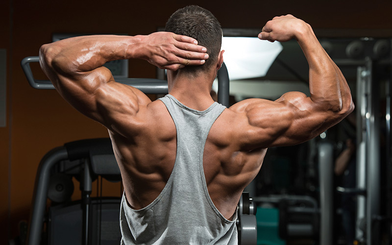 nandrolone-review-results