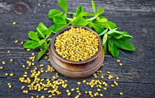 fenugreek-seeds.and.plant