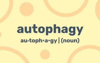 autophagy-diet-plan