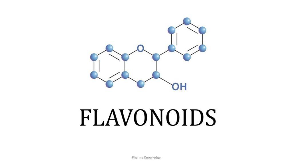 flavonoid-types