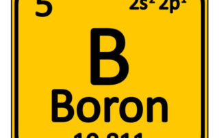 boron-bodybuilding.nutrition